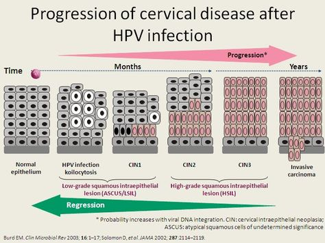 hpv cancer levels