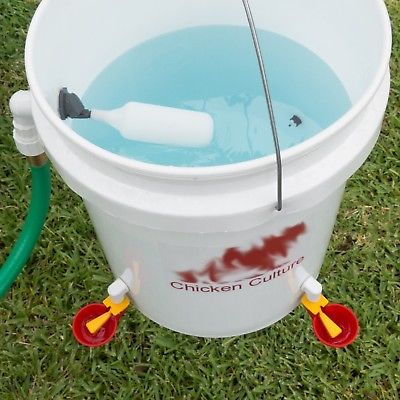 Automatic Chicken Waterer Bucket Kit Poultry Water Drinking Cups Float Valve Chicken Waterer Automatic Chicken Waterer Chicken Feeders