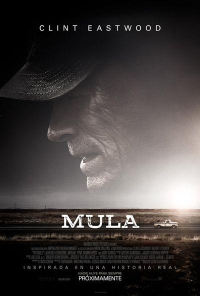 Mula Ver Pelicula Online Completas Descargar Gratis Free Movies Online Full Movies Clint Eastwood