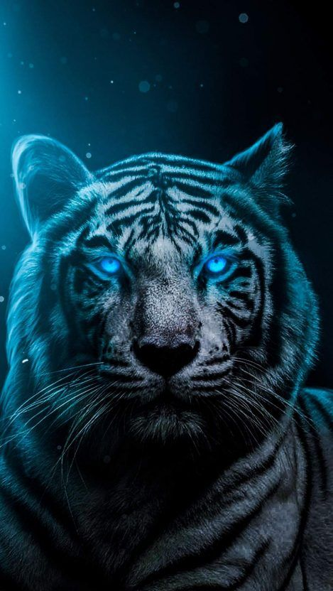 Animal Wallpapers Iphone Wallpapers Tiger Wallpaper Tiger Spirit Animal Animal Wallpaper