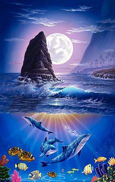 Molokai Dream