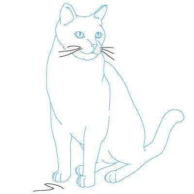 Katze Sitzend Malvorlage - tiffanylovesbooks