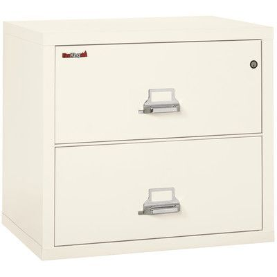 Fireking Fireproof 2 Hour Rated 2 Drawer Vertical Filing Cabinet Filing Cabinet Drawer Filing Cabinet Drawers