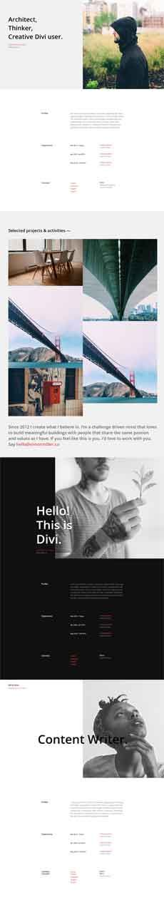 Divi Theme Download Resume Pages layout pack Divi Theme Layouts - resume page layout