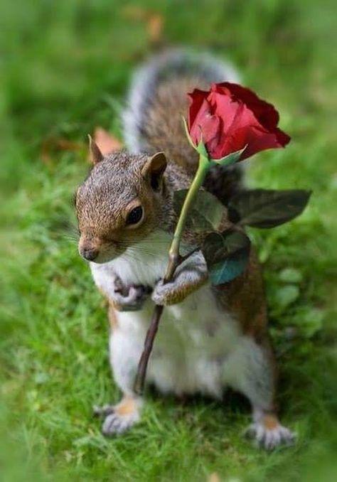 Esperando a su amor..:)