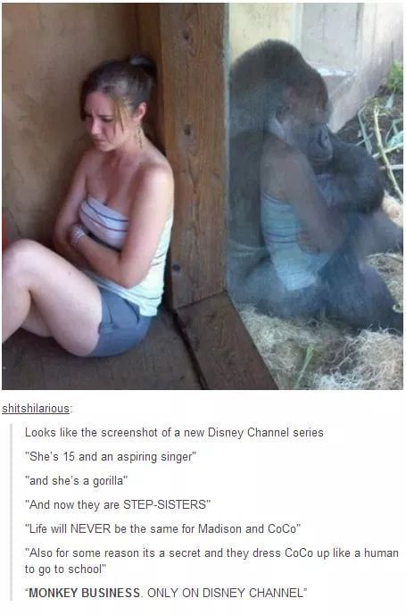 Also New Disney Girl To Stalk Funny Pictures Haha Funny Tumblr Funny