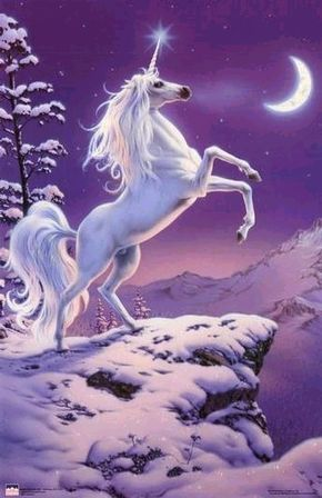 Unicorn. I had a poster just like this when I was a little girl.