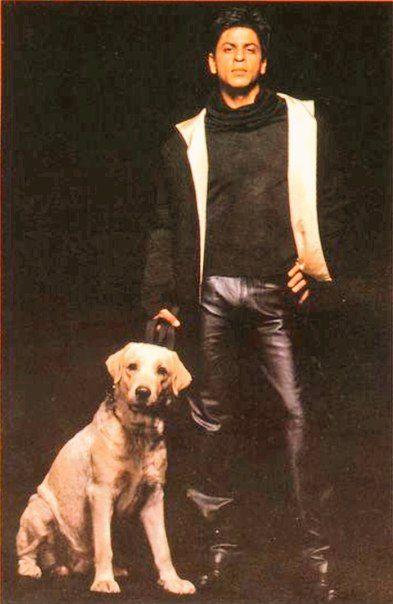 Pin von Salima Pirbhai auf King SRK | Anziehsachen, Anziehen