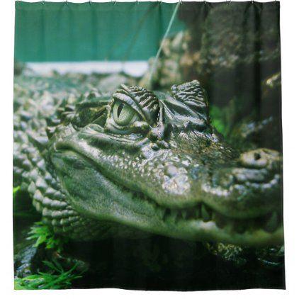 Alligator Shower Curtain Zazzle Com Shower Curtains White