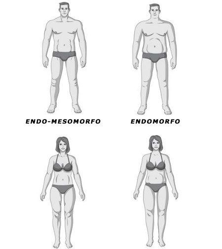 dieta para un endo-mesomorfo