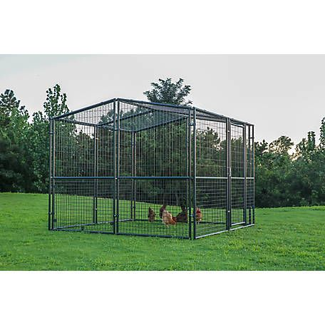 Producer S Pride Universal Poultry Pen 8 Ft X 8 Ft Cr0808 At Tractor Supply Co Patio Stones Tractor Supplies Pet Resort