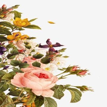 Granica Kwiatow Kwadratowa Ramka Granica Kwiatow Granica Png I Plik Psd Do Pobrania Za Darmo Flower Background Wallpaper Flower Painting Flower Sketches