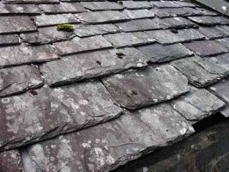 Reinstated Home Condition In 2020 Slate Roof Slate Roof Cost Slate Roof Tiles