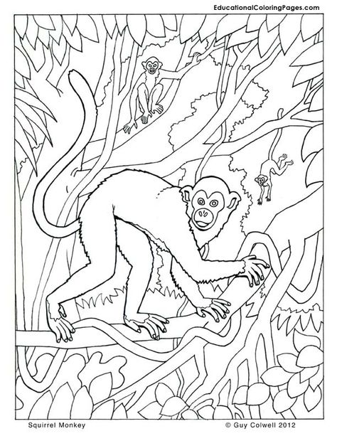 monkey coloring pages | Animal Coloring Books | Pinterest | Monkey ...