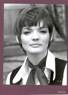 83 Best 1960 S Hairstyles Images 1960s Hair Hair Styles 60s Hair