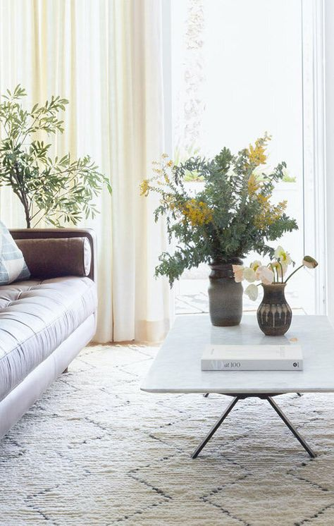 Natural Light  Ivory Linen Neutral Living Room