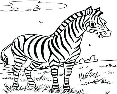 Zara Ni Dhoinn Adli Kullanicinin Jungle Panosundaki Pin Zebra Okul Oncesi
