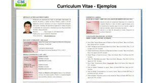 Modelos De Curriculum Vitae Vacios Para Rellenar Modelos De