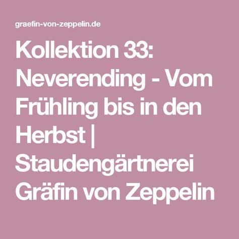Kollektion 33: Neverending - Vom Frühling bis in den Herbst | Staudengärtnerei Gräfin von Zeppelin