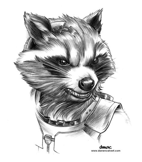 Pencil drawing for my Rocket Raccoon piece.