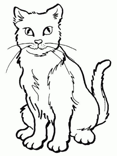 Gato Para Colorear Gatito Para Colorear Paginas Para Colorear Y Dibujos De Gatos