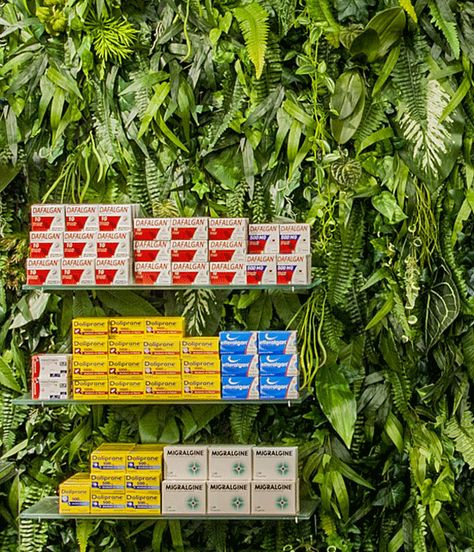 Can you believe how beautiful and cool this is??? Medicinal plants climb walls of Paris pharmacy.  #verticalgardens #medicinalplants #indoorgardens