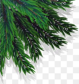 Christmas Branch Vector.Vector Christmas Branch Tree Clipart Branch Clipart