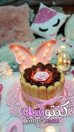 استخدامات بسكويت السافويار حلى بسكويت ليدي فنجر تورته الليدي فينجر تيراميسو Desserts Food Cake