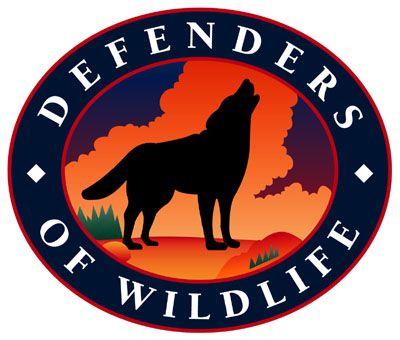 Pin By Anna Lockwood On Wildlife Endangered Wildlife Wildlife Animal Habitats
