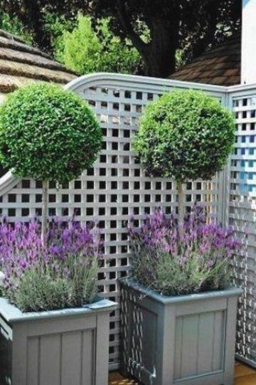 Front Garden Ideas In 2020 Natural Garden Most Beautiful Gardens Plants