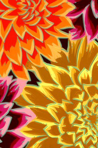 Flower Paint iPhone Wallpaper HD
