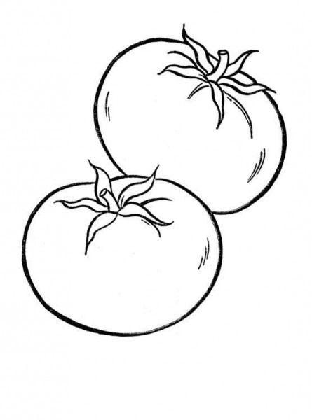 Imagenes Para Colorear De Tomate Tomates Dibujo Paginas Para Colorear Verduras Dibujo
