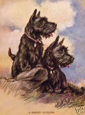 A Bright Outlook ~ Scottish Terriers vintage illustrated art postcard  Scotty dog