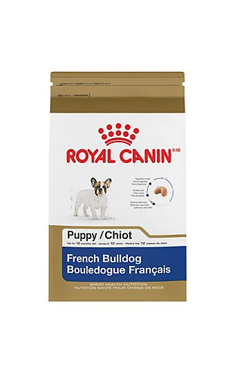French Bulldog Adult Dry Dog Food Royal Canin Breed Health