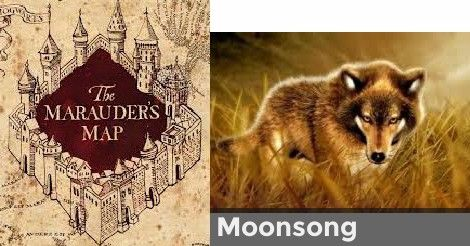 What Is Your Marauder Name The Marauders Harry Potter Quiz Animagus Quiz