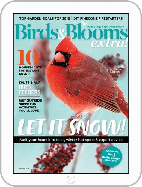 Birds And Blooms Extra Magazine Subscription Digital Birds