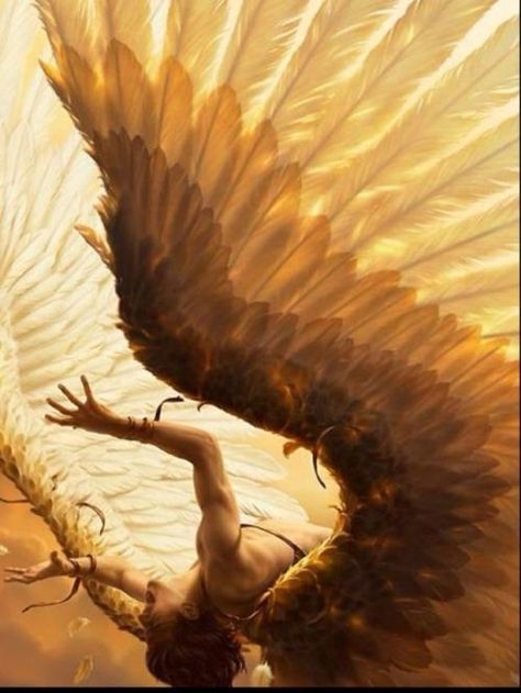 """Illustration by René Milot. if this had been just another angel illustration i would have passed, but the title is of course """"fall of icarus"""". Angeles, Ange Demon, Angels And Demons, Fallen Angels, Fallen Angel Wings, Male Fallen Angel, Lucifer Wings, Guardian Angels, Greek Mythology"""