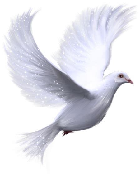 Prayers To Jesus Bird Clip Art Holy Spirit Dove