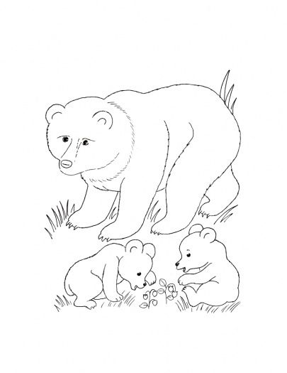 Bear Mother And Bear Cubs Coloring Page Super Coloring Animal