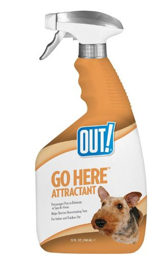 Out Go Here Attractant Indoor Outdoor Dog Training Spray Housetraining Aid Sellerosh In 2020 Outdoor Dog Dog Training Canine Care