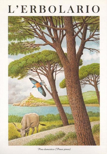 Calendario Boschi.1997 Nel 2019 Art Calendario Acquerello E Illustrazioni