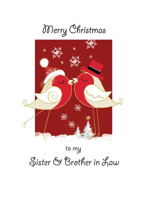 Merry Christmas Sister Brother In Law 2 Robins Kissing Card
