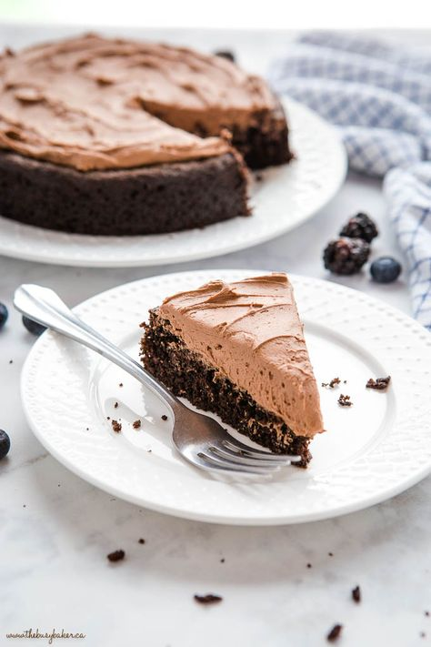 This Best Ever Easy Chocolate Cake is a family favourite recipe that's perfectly moist and tender, ultra chocolatey, and easy to make with basic pantry ingredients! Perfect for beginners! Recipe from thebusybaker.ca! #chocolate #cake #easy #recipe #frosting #simple #bakingforbeginners #familyrecipe #chocolatecake #cakerecipe #baking