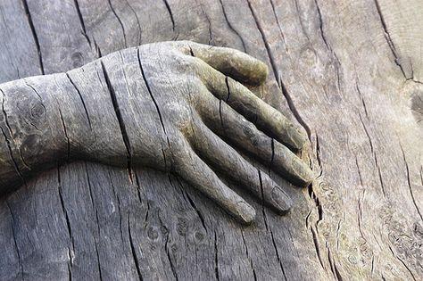wooden hand, kurkcudbright scotland (c) Geoff Barratt
