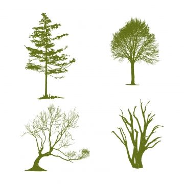 Beautiful Green Trees Silhouette Vector Image And Background Tree Silhouette Silhouette Vector Cartoon Trees