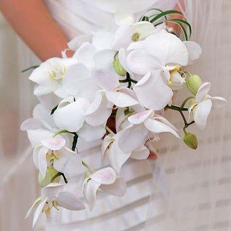 Bouquet Cascata Sposa.Bouquet Orchidee Bianche A Cascata Bouquet Da Sposa Bouquet E Sposa