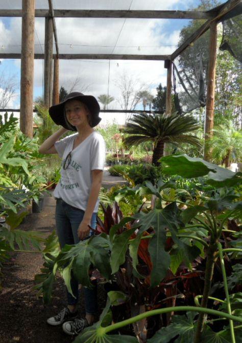 Whitfill Nursery Scottsdale Arizona