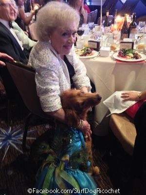 Red Carpet Dress Fundraiser Benefiting Betty White S Humane Heroes Club Helping Animals Of