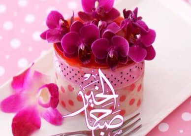احلى صور صباح الخير عالم الصور Strawberry Mousse Cake Cake Mousse Cake