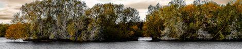 Autumn on Caldecotte Lake